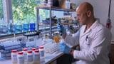 «Kassensturz-Selbstversuch»: Glyphosat und Co. im Körper (Artikel enthält Video)