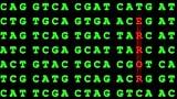 Video «Genetische Vorbelastung – Was gibt uns die Familie mit?» abspielen