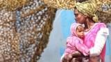Flüchtlinge in der Bibel – und was wir daraus lernen können (Artikel enthält Audio)