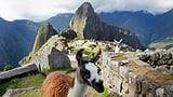 Impressiuns d'in viadi en l'America latina (Artitgel cuntegn audio)