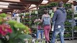 Video «Gartencenter im Test: Von Botanik oft wenig Ahnung» abspielen