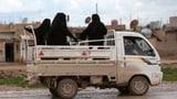 Niederlande will IS-Kämpferinnen zurückkehren lassen (Artikel enthält Video)