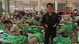 Textilproduktion: Kleider aus Baumwolle (Artikel enthält Video)