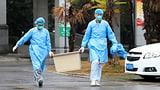 «Die Dynamik des Ausbruchs ist eher beunruhigend» (Artikel enthält Audio)