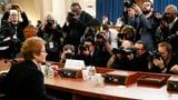 «Korrupte Ukrainer haben willige Amerikaner gefunden» (Artikel enthält Video)