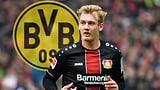 Brandt und Hazard wechseln zum BVB