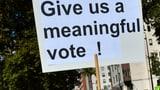 «Der Brexit lähmt nicht nur die Politik, auch die Menschen» (Artikel enthält Audio)