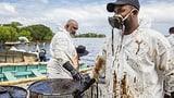 Mauritius kämpft gegen die Ölkatastrophe (Artikel enthält Audio)