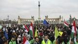 «Das erste Mal, dass Linke und Jobbik kooperieren» (Artikel enthält Audio)