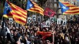 Generalstreik legt Katalonien lahm (Artikel enthält Video)