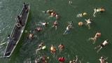 Rhein genug warm, aber die Luft ist zu kalt (Artikel enthält Audio)