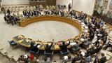 SVP greift Kandidatur für UNO-Sicherheitsratssitz an (Artikel enthält Video)