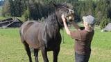Solothurner Bauernhöfe als Ersatz für psychiatrische Kliniken (Artikel enthält Audio)