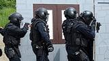 Polizeioffizier von Aargauer Obergericht verurteilt (Artikel enthält Audio)
