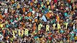 «In Spanien entwickeln sich die Grundrechte zurück» (Artikel enthält Audio)