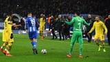 Bürki beworfen: Ibisevic für 3 Spiele gesperrt