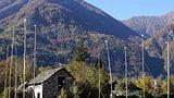 Kantone horten zu viel Bauland (Artikel enthält Video)