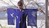Video «Propaganda mit Kimonos» abspielen