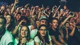 Die Festivalsommer-Revue 2018 mit allen TV-Sendungen (Artikel enthält Video)