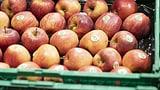 Können Äpfel Heuschnupfen lindern? (Artikel enthält Audio)
