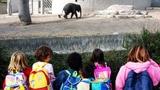 Brugger Schulen bitten Eltern nicht mehr um Geld (Artikel enthält Audio)