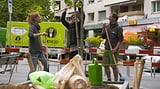 Video «Guerilla Gardening: Wie die Stadt heimlich befruchtet wird» abspielen