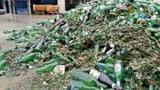 So wird aus dem Bierfläschli ein Wasserfilter (Artikel enthält Audio)
