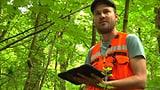 Die Vermessung des Waldes (Artikel enthält Audio)