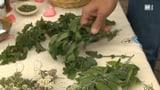 Richtig trocknen für Tees und Badesalze (Artikel enthält Video)