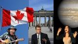 Matt Damon und Cher: «Wenn Trump gewinnt, wandere ich aus»
