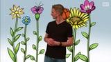 Wie vermehren sich Pflanzen?