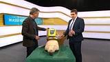 Wissenswertes rund um den Defibrillator (Artikel enthält Video)