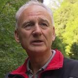 Peter Balordi