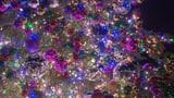 Video «Weihnachtsfest: Wer sich den ganzen Rummel ausgedacht hat» abspielen