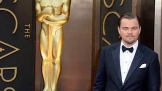 DiCaprio, Blanchett & Co.: Das sind die Oscar-Nominationen