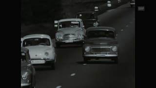 «Mit 0.8 Promille fährt man besser Auto als nüchtern» (Artikel enthält Video)