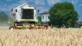 Lesen Sie hier, welche Art von Bauernhöfen sich derzeit in der Schweiz ausbreitet.