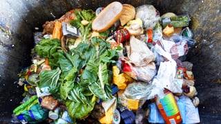 Wir schmeissen tonnenweise Lebensmittel weg