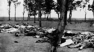 Schreiben, um zu verstehen: Berichte über den Völkermord