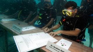 Was macht der Klimawandel mit den Meeren?