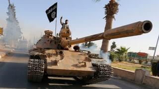 «Der IS kann nur mit Gewalt gestoppt werden»