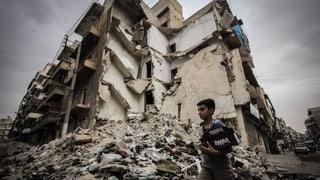 «Das Assad-Regime wird an der Macht bleiben»