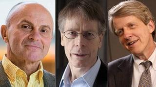 Nobelpreis für Wirtschaft geht an drei US-Amerikaner