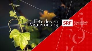 Die Sendungen von SRF zum Weinfest