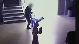 Schockierendes Video zeigt Luzerner Prügel-Polizisten