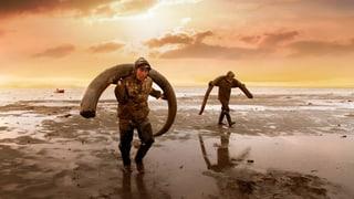 «Genesis 2.0»: Der Traum, ein Mammut zu klonen
