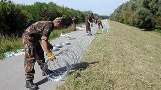 Ungaria disfà la saiv