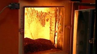 Video «Energiewende: Biomasse – Unterschätztes Strompotenzial (3/5)» abspielen