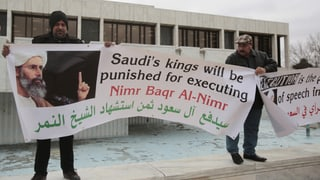 «Die Position Saudi-Arabiens ist nah an derjenigen des IS»