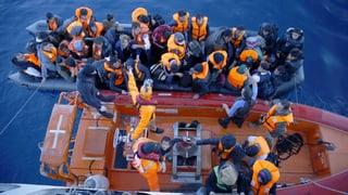 «Es gibt keine gute Kontrolle entlang der Ägäisküste»